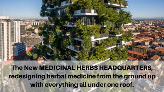 A Vision for the Future of The Medicinal Herbs HeadQuarters in 2022