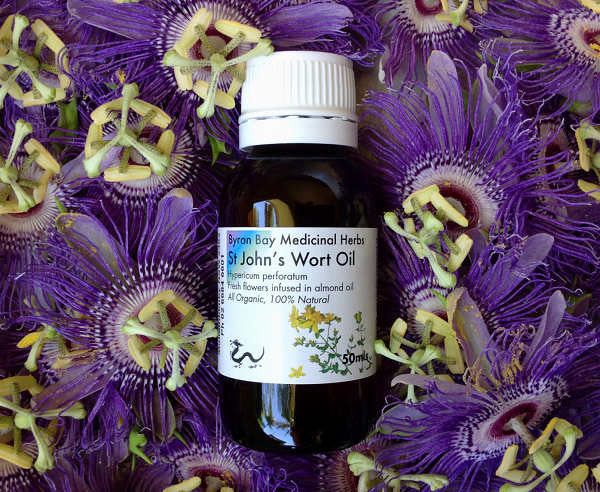St Johns Wort Infused Oil 50ml
