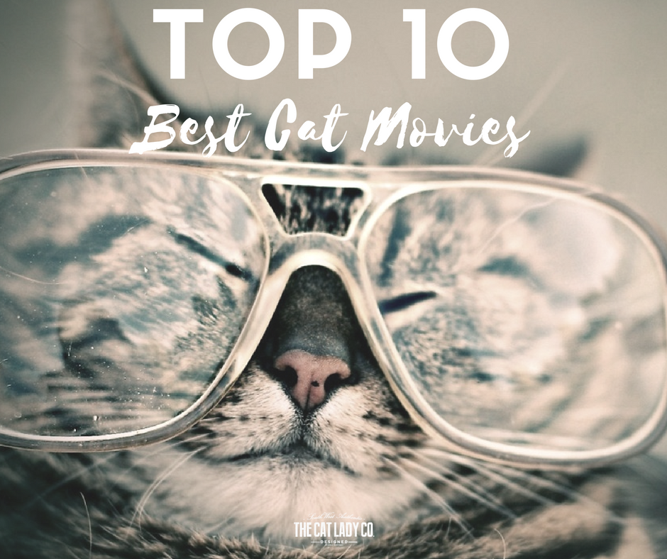 Top 10 Best Cat Movies
