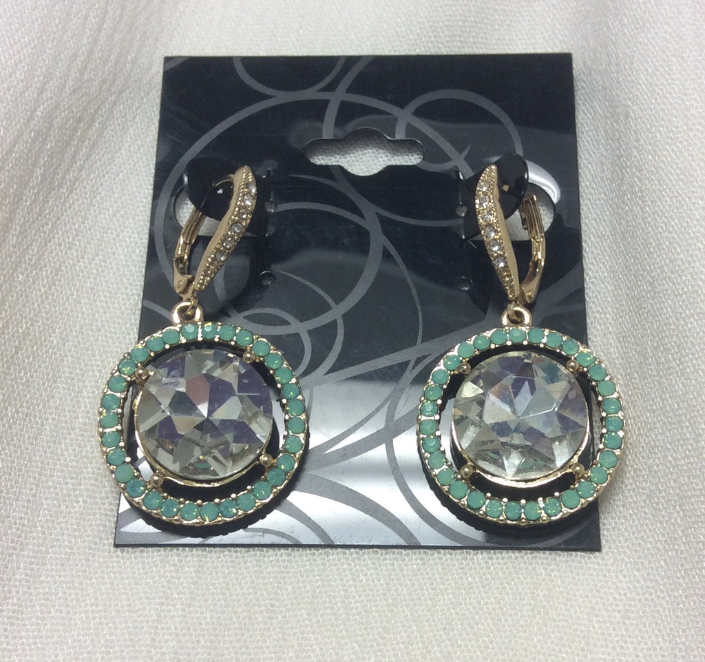 Bling Outer Circle & Silver Stone Earrings