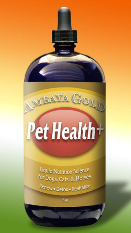 Ambaya Gold Pet Health+