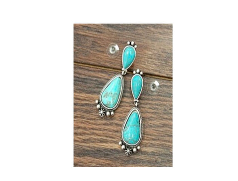 Natural stone earrings post