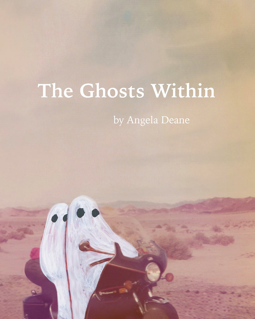"PRE-ORDER - ""The Ghosts Within"" Book"