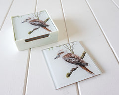 GLASS COASTERS - KOOKABURRA