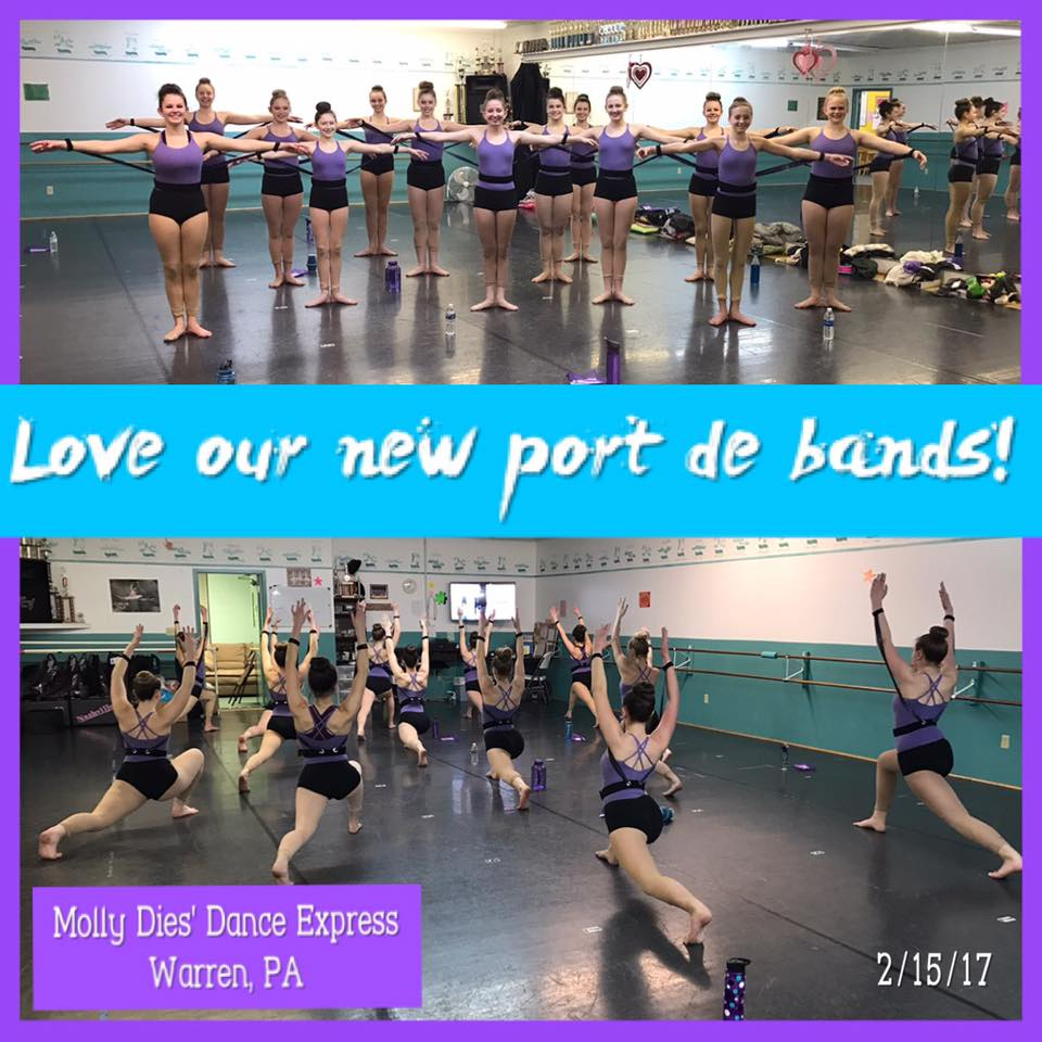 What do they say about my Port de Band® by StretchStrength.com? Testimonials and Reviews by real dance teachers and educators!