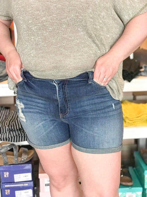 Darcy High Rise Distressed Shorts