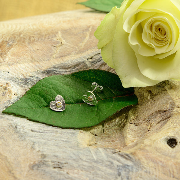Silver with Gold outline Diamanté Stud Earrings