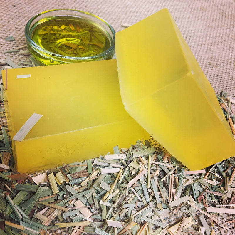 Timeless Anti-Aging Bar - Olive Oil + Lemongrass - Vegan Concept