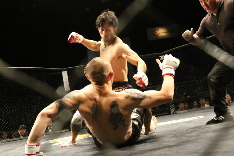MMA Supplements: Get the Supplements You Need for Mixed Martial Arts