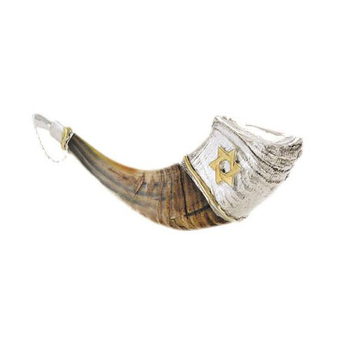 Shofar Anointing Rams horn - Silver plated - Rock of Israel