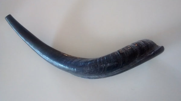 Shofar Medium - Rock of Israel