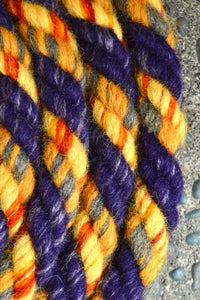 Purple and Yellow Loop Rein