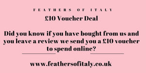 £10 Voucher to spend online when you shop with us!