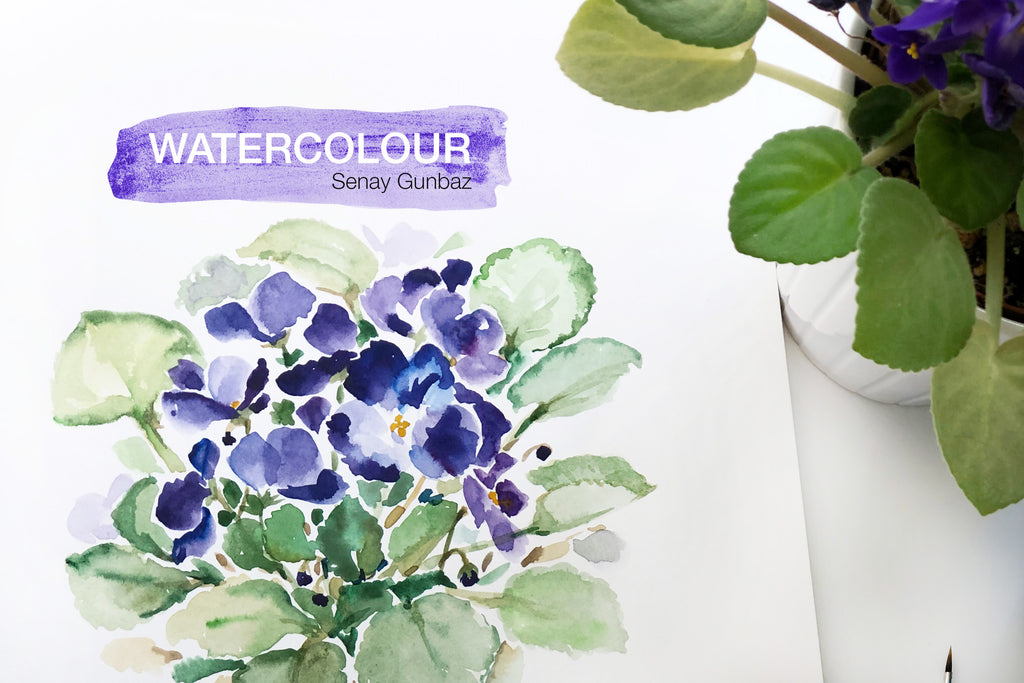 African Violet watercolour painting