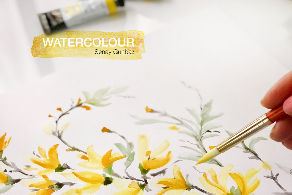 Loose watercolour painting Forsythia