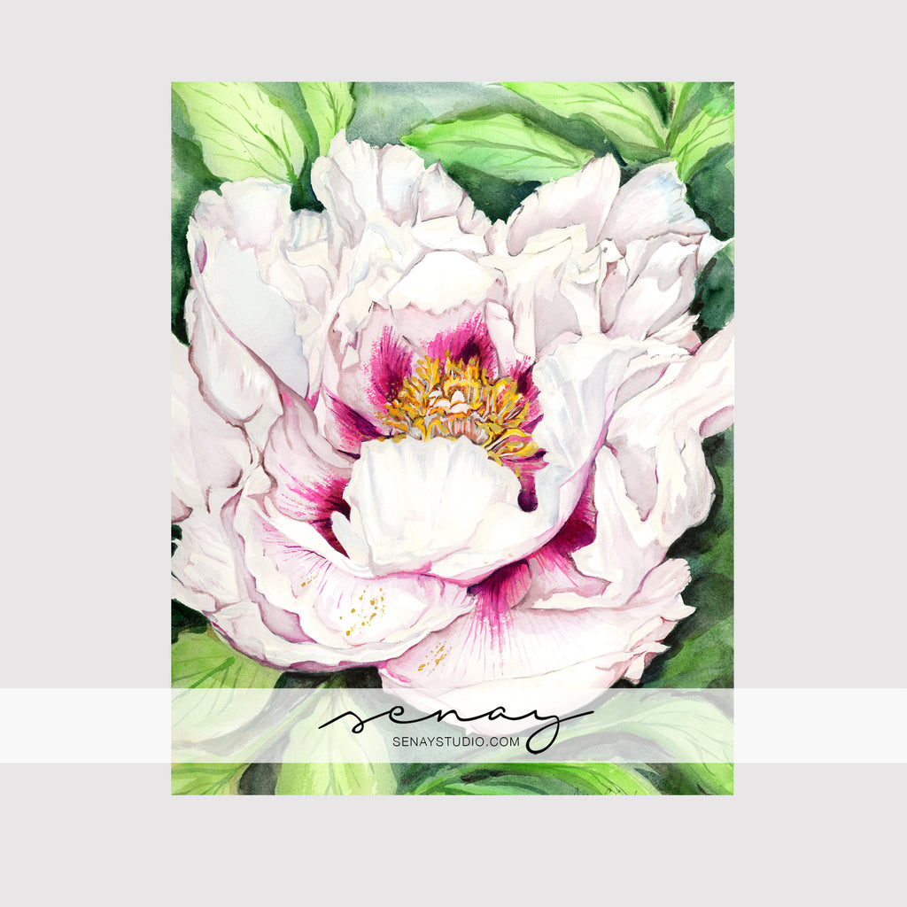 Beautiful Peony giclée canvas (READY TO HANG)