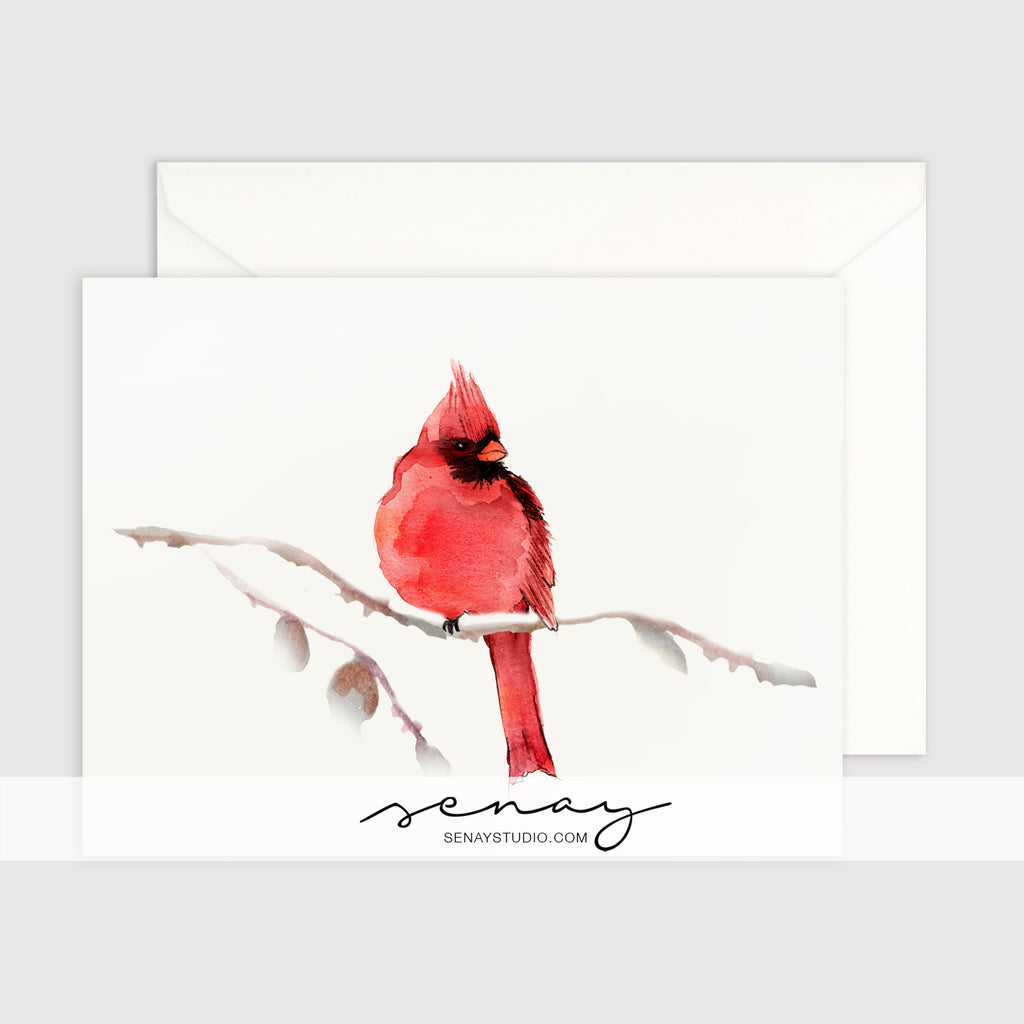 Red Cardinal Bird greeting card