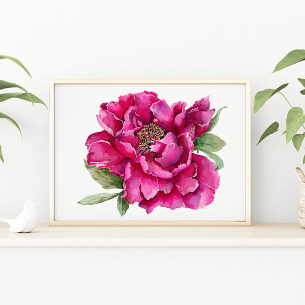 Peony Flower giclée watercolour paper