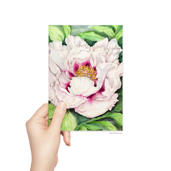Beautiful Peony blank card
