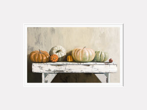 Pumpkin Lineup, heirloom pumpkins on bench, autumn, decor, matted giclee print, Richard Hall
