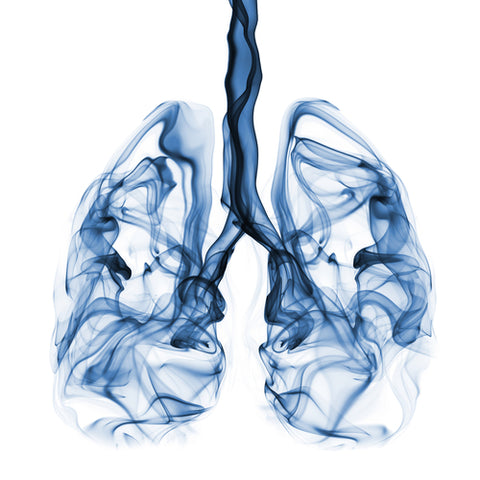 Air Pollution And Lungs Image-Clean Air Plus