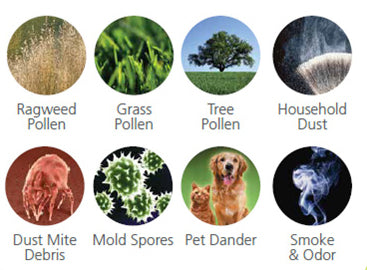 Allergen Image-Clean Air Plus