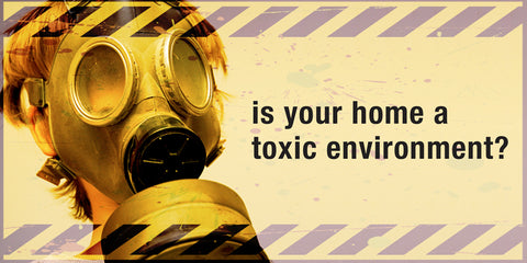 Is Your Home A Toxic Environment Image-Clean Air Plus