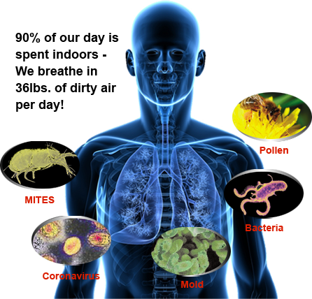 Indoor Air Particle Pollution Image-Clean Air Plus