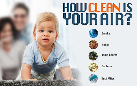 Indoor Air Image-Clean Air Plus
