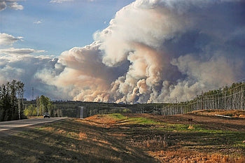 Safeguarding against Wildfire Smoke