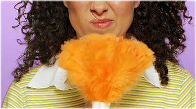 Women With Feather Duster Image-Clean Air Plus