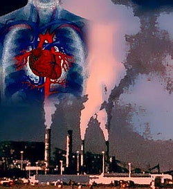 Pollution Heart -Clean air Plus