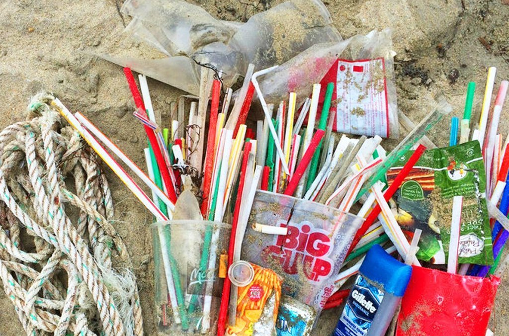 Ditching Plastic Straws Is Big News!