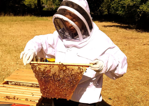 Backyard beekeeping hobby is eco-friendly and healthy for people and planet.