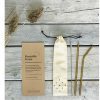 Reusable Straw Kit - metal - Good World Goods
