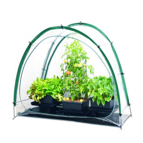 Culti-Cave Mini Greenhouse