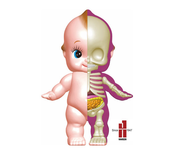 Jason Freeny Cupid Baby Classic Anatomy Figure PREORDER