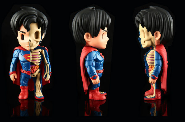 XXRAY Superman by Jason Freeny & MightyJaxx (Wave 1) - Tenacious Toys® - 2