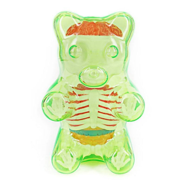 Jason Freeny Baby Clear Gummy Bear Anatomy 4-inch Figure - Tenacious Toys® - 4