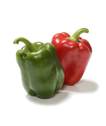 Organic California Wonder Sweet Pepper