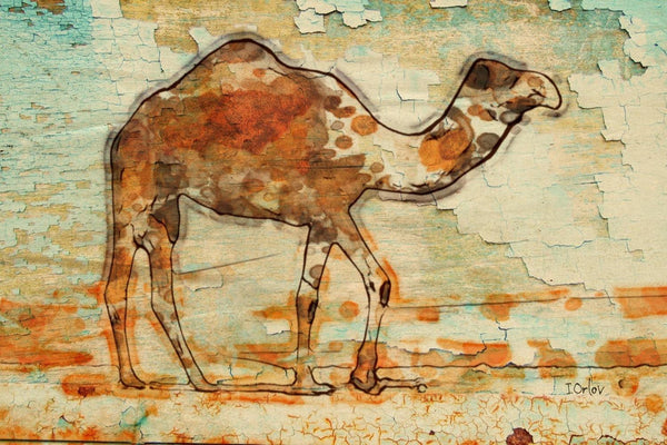 "Camel. Large Camel Rustic Canvas Print by Irena Orlovup to 60"", Camel wood textu"