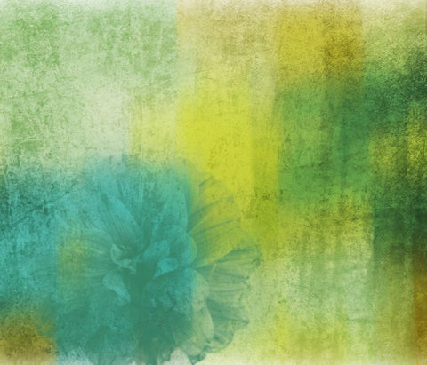blossom and shine. Canvas Print by Irena Orlov