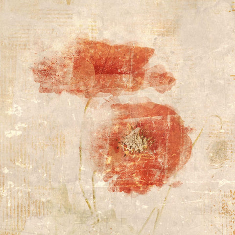 "Abstract Poppies.  Canvas Print by Irena Orlov 16X16"", large canvas art print, w"