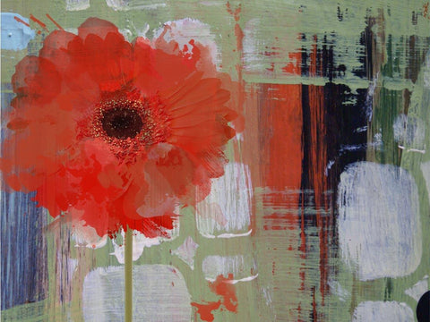 Blooming. Canvas Print by Irena Orlov 20X16""