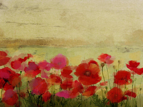 Field of Poppies. Canvas Print by Irena Orlov 24x36""