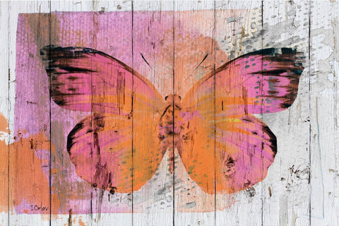 "Butterfly 3065 Canvas Print by Irena Orlov 20X16"" ,large butterfly canvas print,"