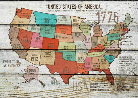 "The United States of America Map IV . Canvas Print by Irena Orlov 24"" X 36"""