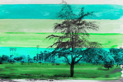 Beautiful Nature Green Tree. Canvas Print by Irena Orlov 40x30""