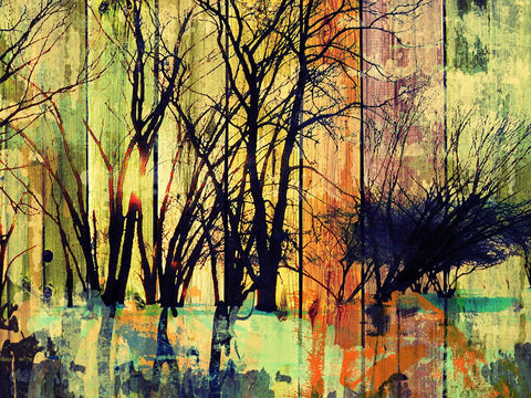 Forest. Canvas Print by Irena Orlov 24x36""