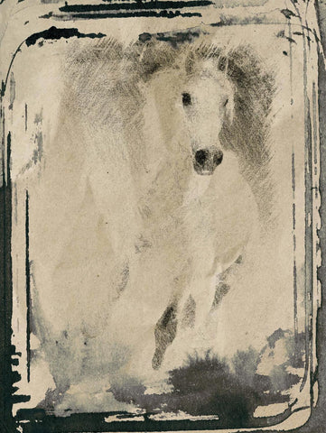 "Beautiful white horse. Giclee Print by Irena Orlov 40"" x 30"""